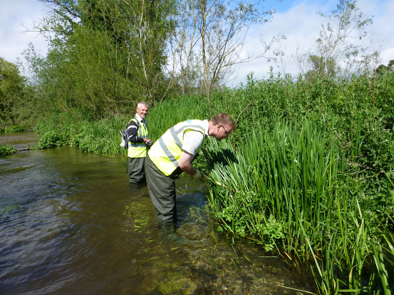 Monitoring Water Voles