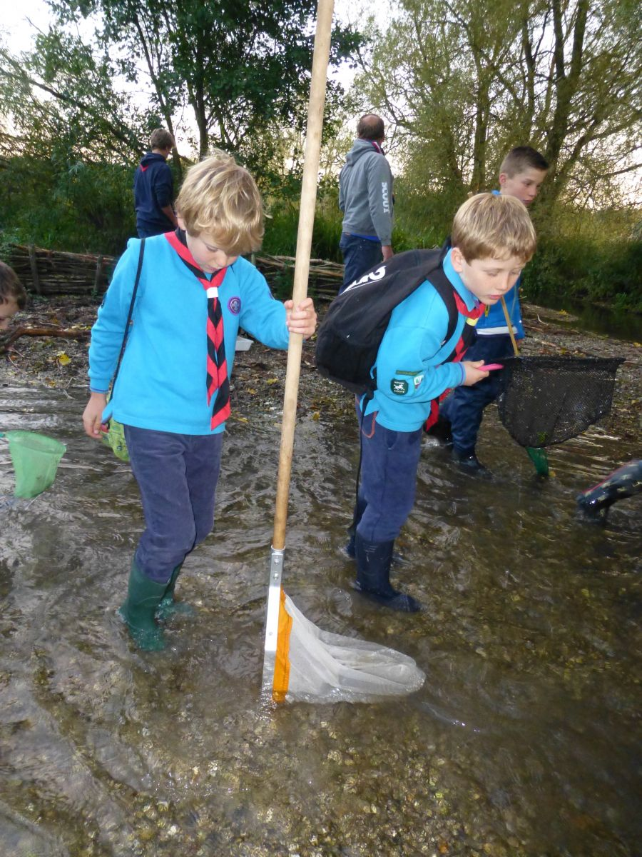 Tour and Explore session with Beavers on the Kennet