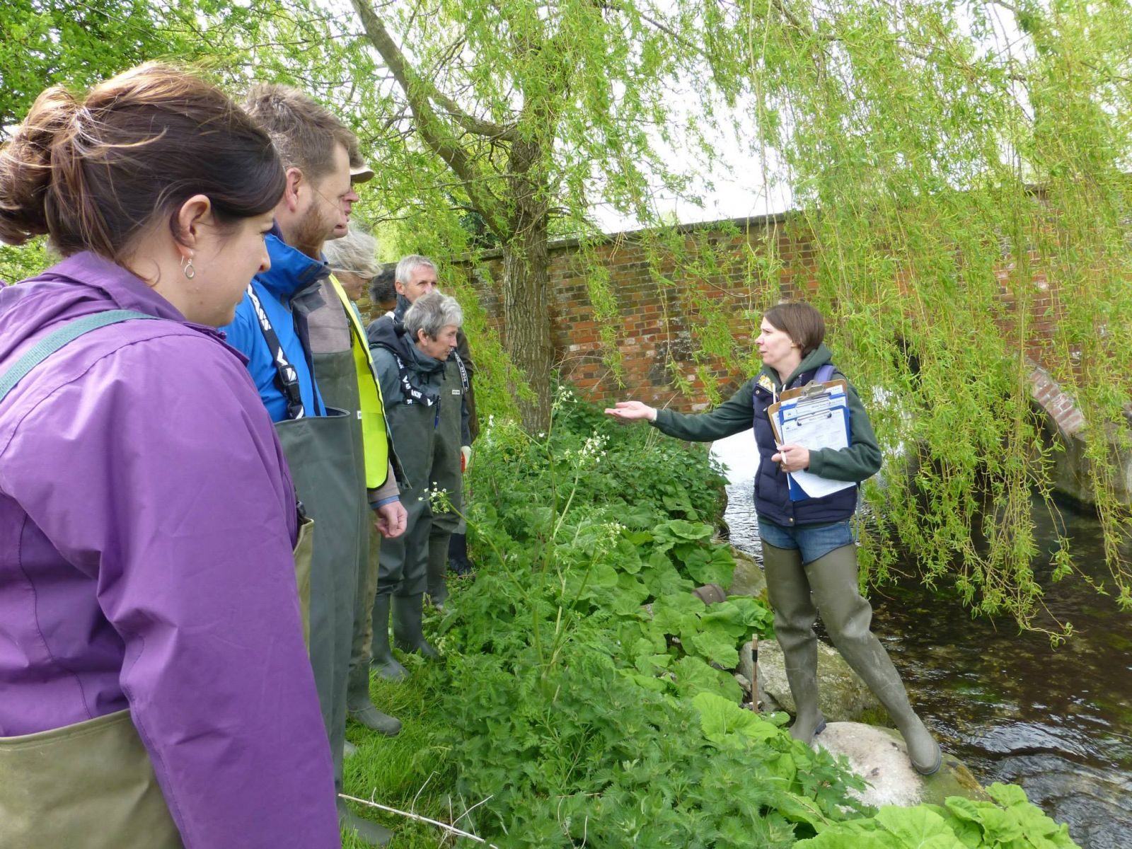 water vole training briefing