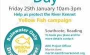 Yellow Fish Come to Reading