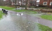 Flooding Pollutes the Kennet