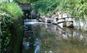 Foudry Brook opened up for fish to swim again